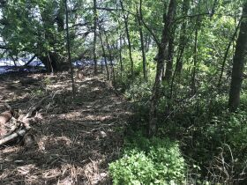 Forested Vacant Lot on Lakeshore Dr, Escanaba- DNR Properties featured photo 7