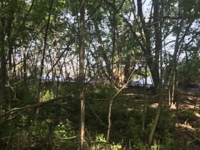 Forested Vacant Lot on Lakeshore Dr, Escanaba- DNR Properties featured photo 9