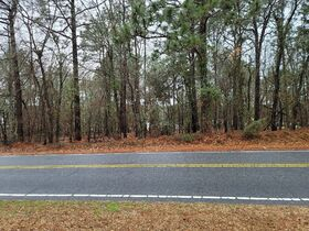 10 DAY UPSET PERIOD-Court Ordered Real Estate Auction- Richmond County, NC featured photo 8