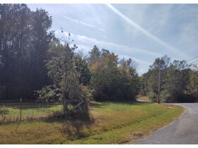 Maples Estate: Residential Lot on County Road 78, Rosalie, AL (Jackson County AL) featured photo 2