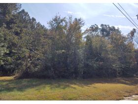 Maples Estate: Residential Lot on County Road 78, Rosalie, AL (Jackson County AL) featured photo 3
