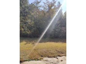 Maples Estate: Residential Lot on County Road 78, Rosalie, AL (Jackson County AL) featured photo 4