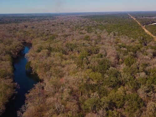 203 ± Acres | Santa Fe River | Outdoor Enthusiast's Dream featured photo
