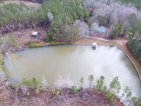 38+/- Acres w/ Cabin, Pond and Timber in Montgomery County, NC featured photo 7