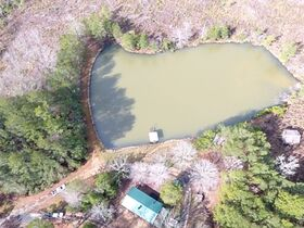 38+/- Acres w/ Cabin, Pond and Timber in Montgomery County, NC featured photo 12