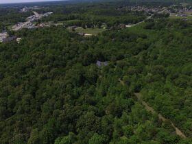 79.7 Acres Offered in 11 Tracts featured photo 3
