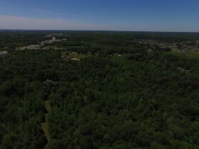 79.7 Acres Offered in 11 Tracts featured photo 8