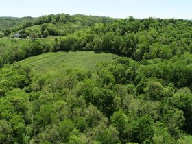 Beautiful 121+/- Acres Offered in Several Tracts - House, Outbuildings, Great Pasture, Scenic Views, Creek & Spring - Estate Auction May 29th featured photo 7
