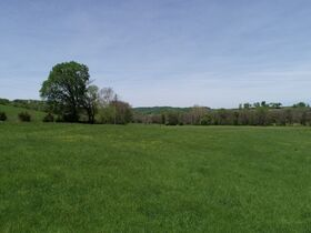 Beautiful 121+/- Acres Offered in Several Tracts - House, Outbuildings, Great Pasture, Scenic Views, Creek & Spring - Estate Auction May 29th featured photo 10