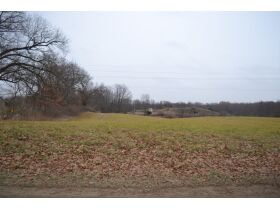 58 +/- Acres at the corner of Schafer and Pingree Rd, Livingston Co. featured photo 9
