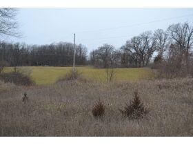 58 +/- Acres at the corner of Schafer and Pingree Rd, Livingston Co. featured photo 10