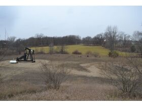 58 +/- Acres at the corner of Schafer and Pingree Rd, Livingston Co. featured photo 12