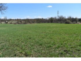 58 +/- Acres at the corner of Schafer and Pingree Rd, Livingston Co. featured photo 2