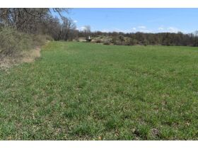58 +/- Acres at the corner of Schafer and Pingree Rd, Livingston Co. featured photo 4