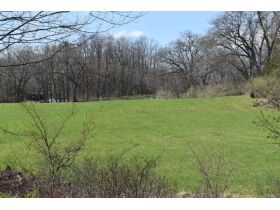 58 +/- Acres at the corner of Schafer and Pingree Rd, Livingston Co. featured photo 5