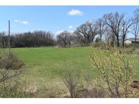58 +/- Acres at the corner of Schafer and Pingree Rd, Livingston Co. featured photo 6