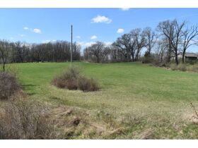 58 +/- Acres at the corner of Schafer and Pingree Rd, Livingston Co. featured photo 7