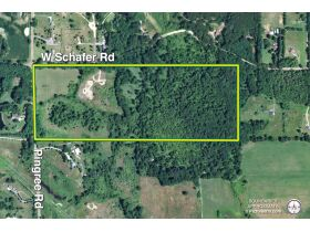 58 +/- Acres at the corner of Schafer and Pingree Rd, Livingston Co. featured photo 1