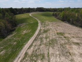 98.66 +/- Acres at Absolute Auction featured photo 1