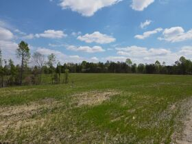 98.66 +/- Acres at Absolute Auction featured photo 6