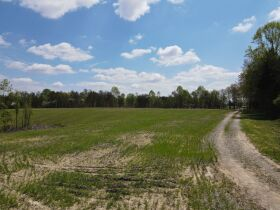 98.66 +/- Acres at Absolute Auction featured photo 10