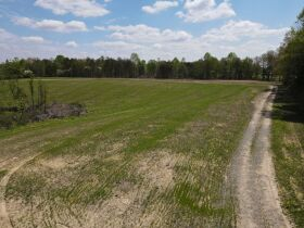 98.66 +/- Acres at Absolute Auction featured photo 3