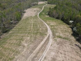 98.66 +/- Acres at Absolute Auction featured photo 4