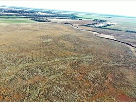 155 ACRES LOCATED SOUTH OF ARGONIA KS   126.2 AC TILLABLE   28.9 AC TAME GRASS   NO GROWING CROP featured photo 12