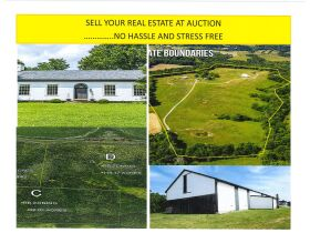 Auction Real Estate at Your Preferred Time featured photo 1
