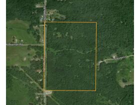 60A N. 11 Mile Rd, Midland County- DNR Properties featured photo 3