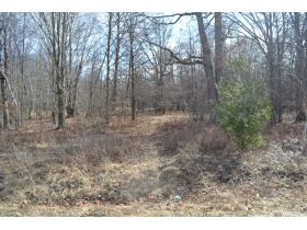 60A N. 11 Mile Rd, Midland County- DNR Properties featured photo 4