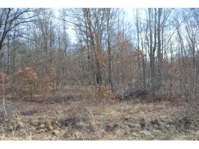 60A N. 11 Mile Rd, Midland County- DNR Properties featured photo 5