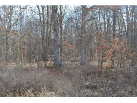 60A N. 11 Mile Rd, Midland County- DNR Properties featured photo 6