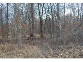 60A N. 11 Mile Rd, Midland County- DNR Properties featured photo 7
