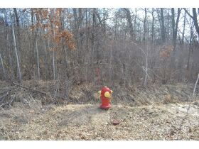 60A N. 11 Mile Rd, Midland County- DNR Properties featured photo 8