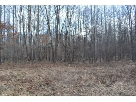 60A N. 11 Mile Rd, Midland County- DNR Properties featured photo 12