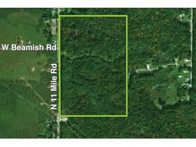 60A N. 11 Mile Rd, Midland County- DNR Properties featured photo 1