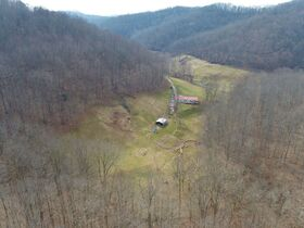 Absolute 190 Acre Land and Farm Offered In Parcels Auction featured photo 4