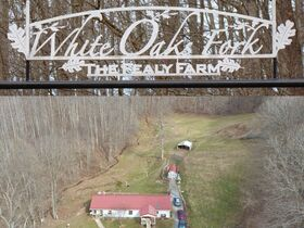 Absolute 190 Acre Land and Farm Offered In Parcels Auction featured photo 1