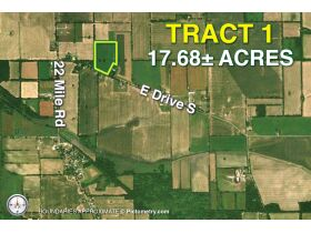 176+/-A Offered in 5 Tracts, Calhoun County featured photo 2
