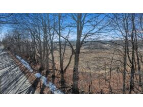 176+/-A Offered in 5 Tracts, Calhoun County featured photo 8