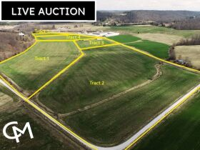 42 +/- ACRES OFFERED IN 5 TRACTS SELLING AT ABSOLUTE AUCTION - BRISTOW, IN featured photo 1