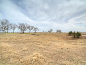 LIVING ESTATE AUCTION - PRISTINE PAYNE COUNTY, OK FARM PLUS LIFETIME  ACCUMILATION OF FARM-RANCH EQUIPMENT featured photo 10