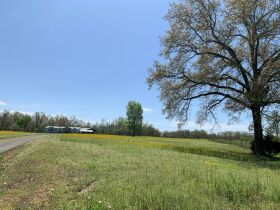 60+/- Acres Offered in Tracts - Range from 5+/- Acres to 12+/- Acres Each - Mobile Home & Barn featured photo 5