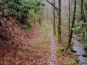 The Sam Wesley Patterson Estate: 88 Acre Smoky Mountain Farm featured photo 2