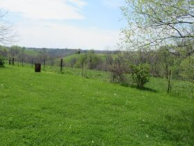 House & 2.5 Acres m/l ~ 2 Acres by boundary & Personal Property - Absolute Online Only Auction featured photo 10