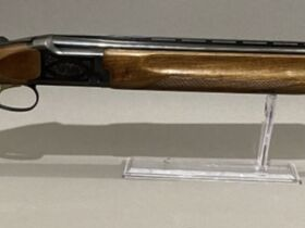 May Firearms Auction featured photo 7