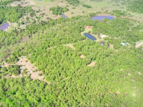 SECLUDED WOODED  ACREAGES AUCTION-STILLWATER OK AREA featured photo 3