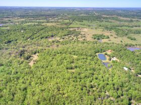 SECLUDED WOODED  ACREAGES AUCTION-STILLWATER OK AREA featured photo 6