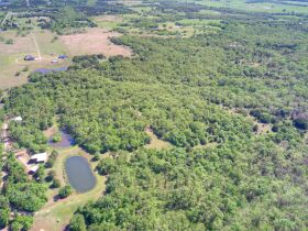 SECLUDED WOODED  ACREAGES AUCTION-STILLWATER OK AREA featured photo 7